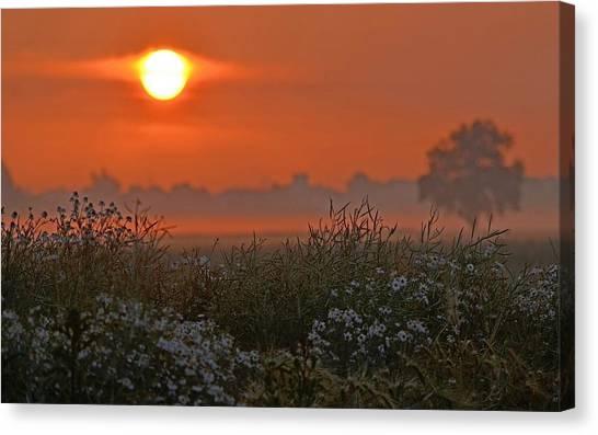 Sunrise Horizon Canvas Print - Sunset by Mariel Mcmeeking