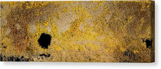 Abstract 67 Canvas Print