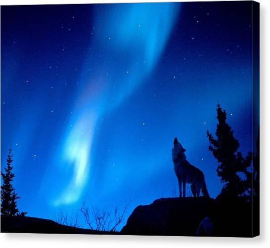 Wolf Moon Canvas Print - Wolf by Mariel Mcmeeking