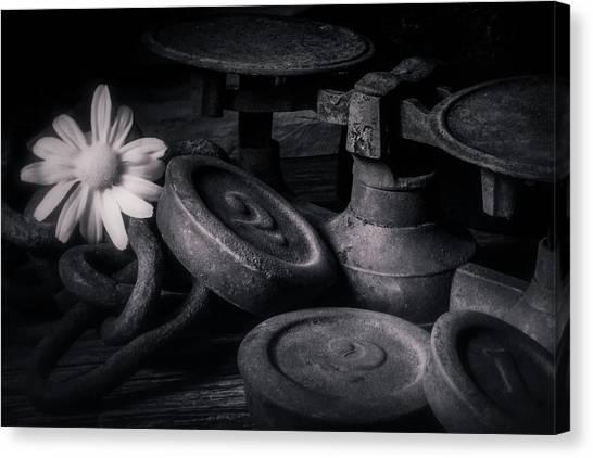Weights Canvas Print - 221 by Tom Mc Nemar