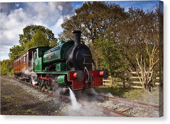 Steam Trains Canvas Print - Train by Super Lovely