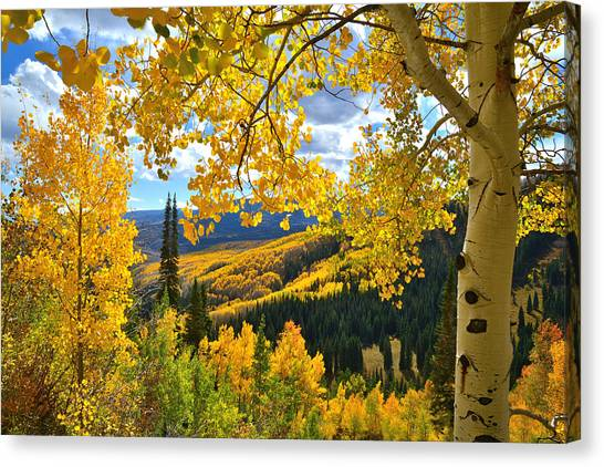 Ohio Pass Fall Colors Canvas Print