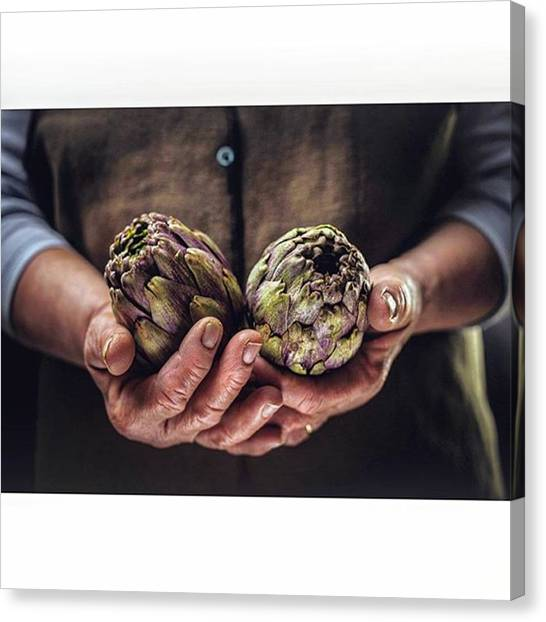 Artichoke Canvas Print - A Commercial And Advertising Project In by Ruggiero Scardigno