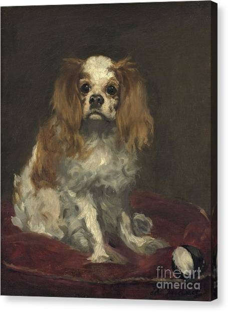 Canvas Print - A King Charles Spaniel by Edouard Manet