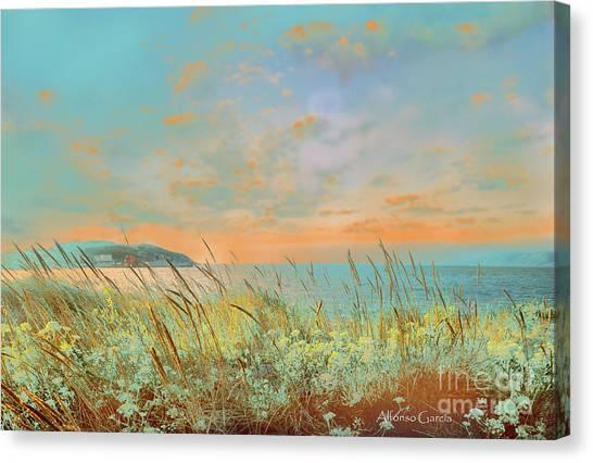 Amanecer Canvas Print