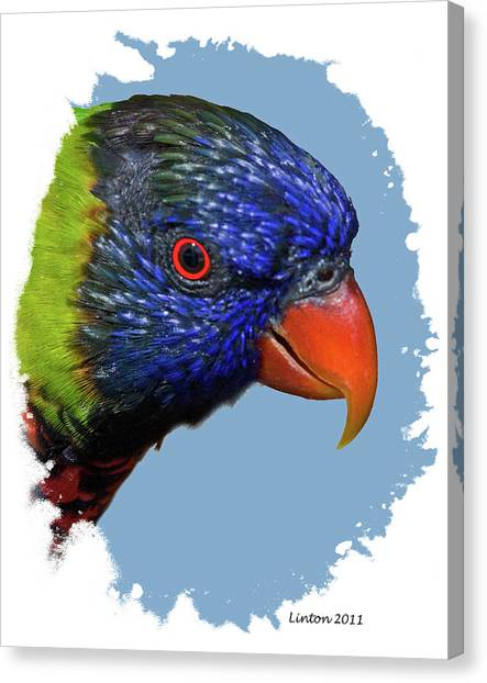 Australian Lorikeet Canvas Print by Larry Linton