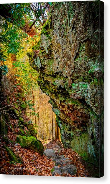 3 Bridges Trail #1 Canvas Print