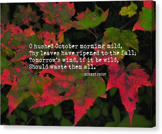 Changing Color Quote Canvas Print by JAMART Photography
