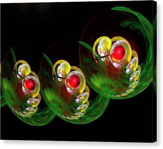 3 Embryos Canvas Print