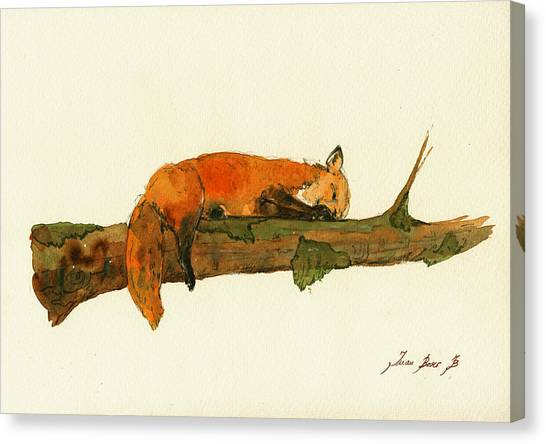 Small Mammals Canvas Print - Fox Sleeping Painting by Juan  Bosco