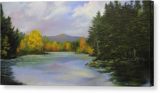 Gale Meadow Pond Canvas Print
