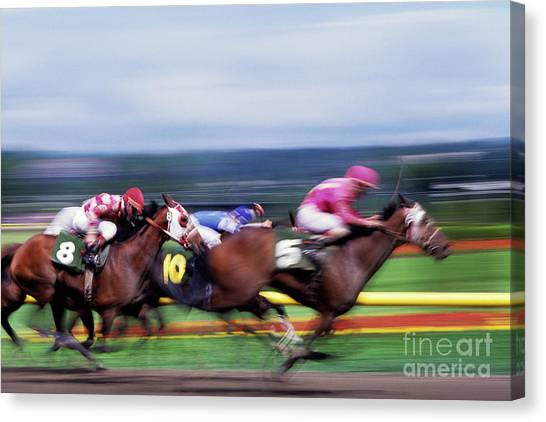 Horse Race Canvas Print