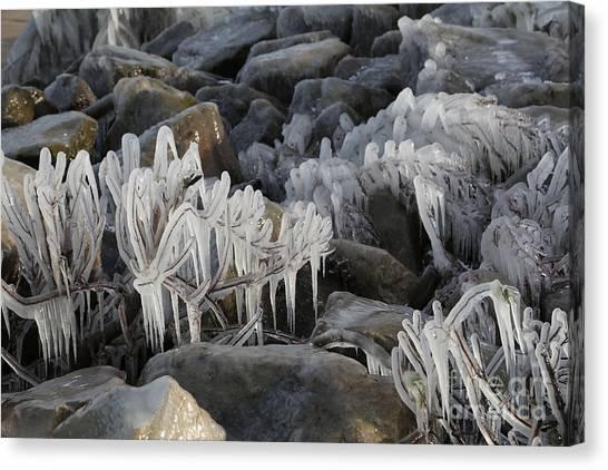 Hailstorms Canvas Print - Think Ice Coats The Landscape by Douglas Sacha