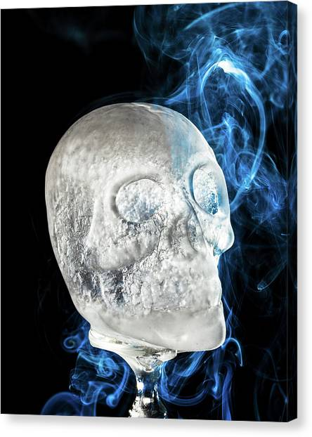 Ice Skullpture Canvas Print