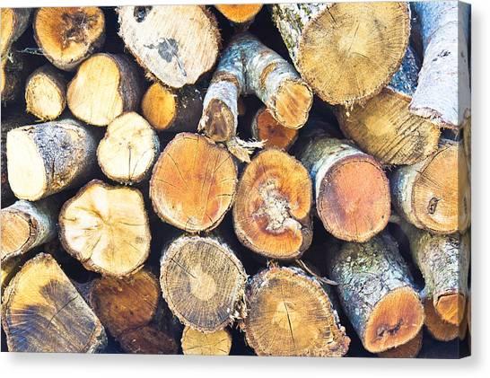 Deforestation Canvas Print - Logs by Tom Gowanlock