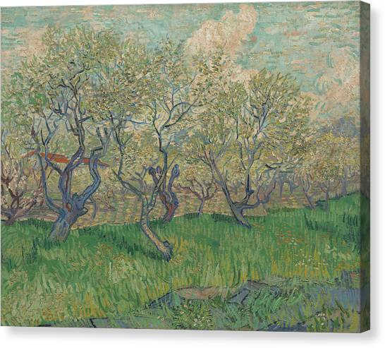 Post-modern Art Canvas Print - Orchard In Blossom by Vincent van Gogh