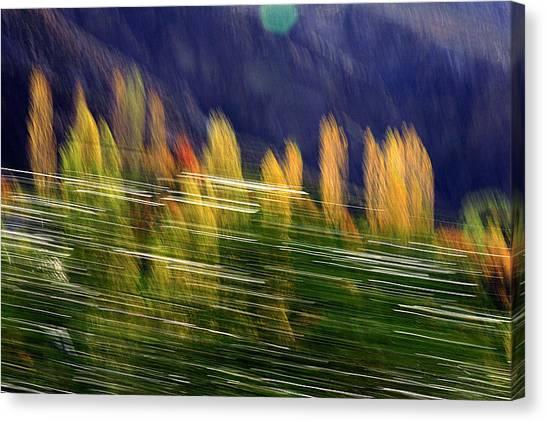 Passing Canvas Print by Robert Shahbazi