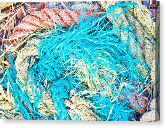 Red Knot Canvas Print - Ropes by Tom Gowanlock