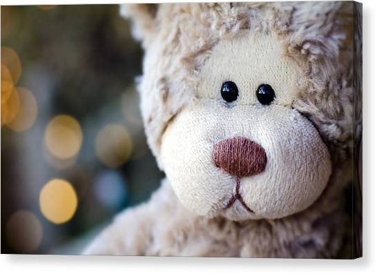 Teddy Bears Canvas Print - Stuffed Animal by Mariel Mcmeeking