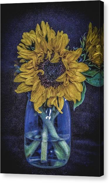 Sunflower Canvas Print by Angela Aird