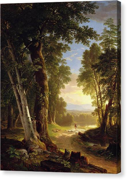The Beeches Canvas Print