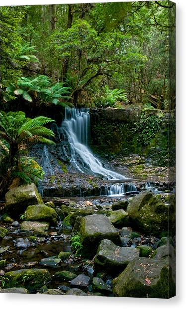 Waterfall In Deep Forest Canvas Print