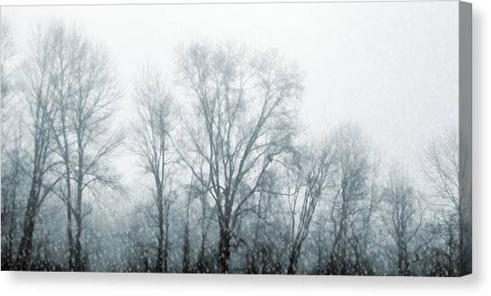 Winter View Canvas Print by JAMART Photography