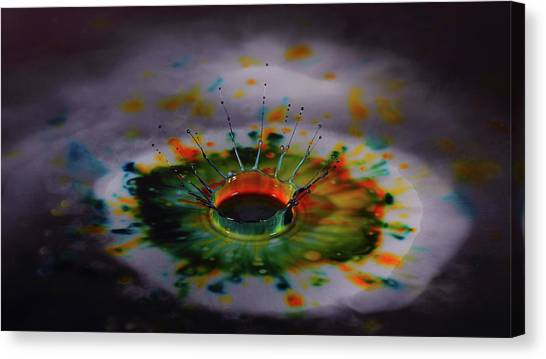 Kiwis Canvas Print - Water Drop by Mariel Mcmeeking