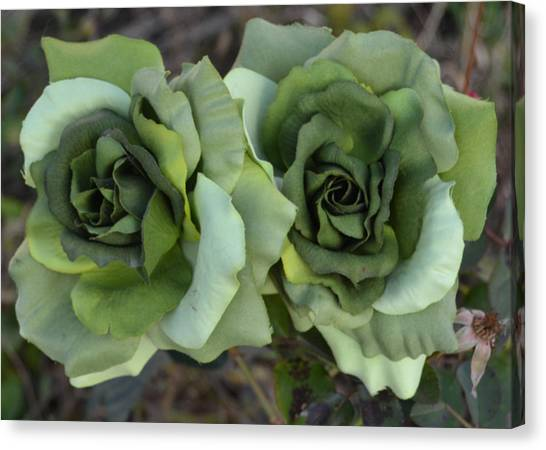 Artichoke Canvas Print - Rose by Super Lovely