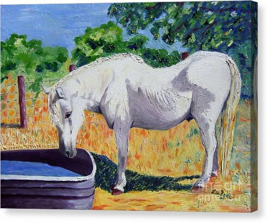 34 Year Old Elfid Canvas Print by Lisa Rose Musselwhite