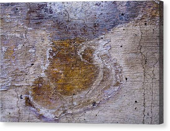 Abstract 62 Canvas Print