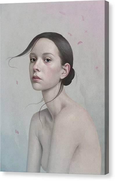 380 Canvas Print by Diego Fernandez