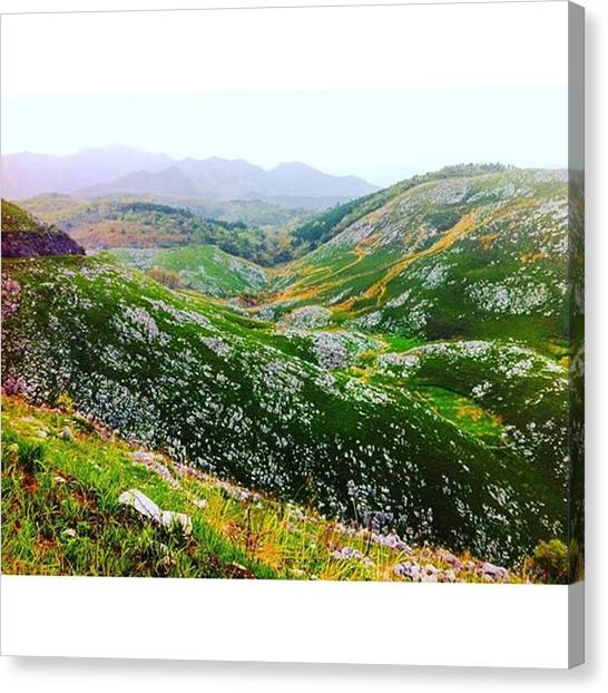 Karsts Canvas Print - Instagram Photo by MST Photography