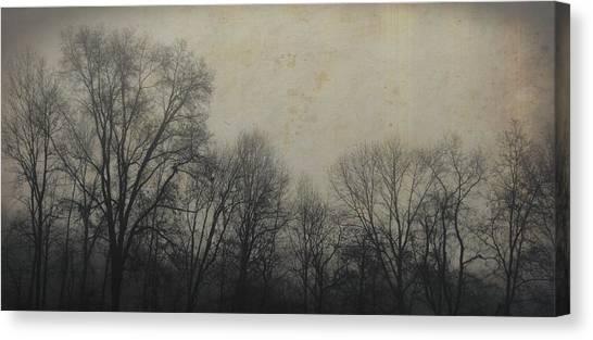 Bare Branch Horizon Canvas Print by JAMART Photography