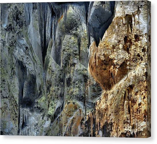 Carlsbad Caverns Canvas Print - Carlsbad Caverns Detail by Stephen  Vecchiotti