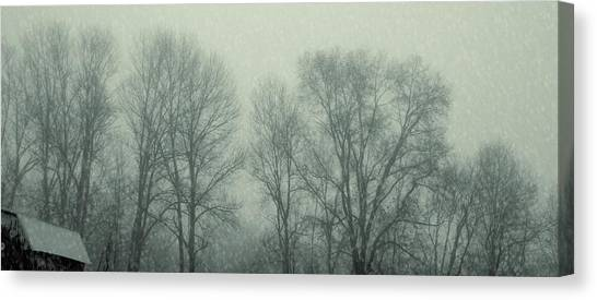 Dead Of Winter Canvas Print by JAMART Photography