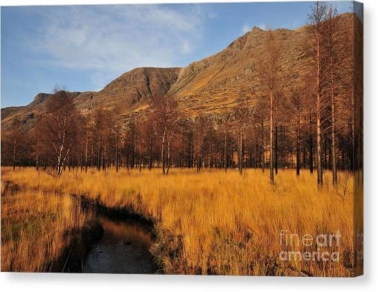Glen Canvas Print - Glen Torridon by Smart Aviation