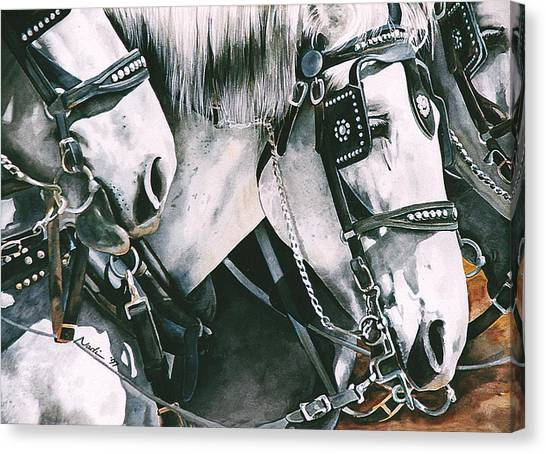 Draft Horses Canvas Print - 4 Grays by Nadi Spencer