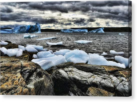 Icebergs At St. Anthony Canvas Print