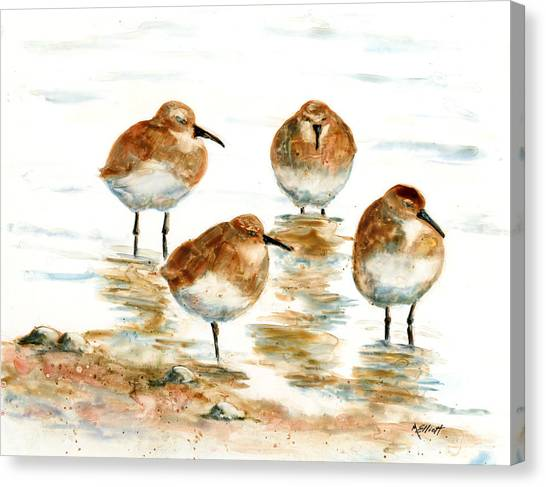 Sandpipers Canvas Print - 4 Little Pipers by Marsha Elliott