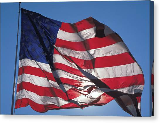 Old Glory Canvas Print by Carl Purcell