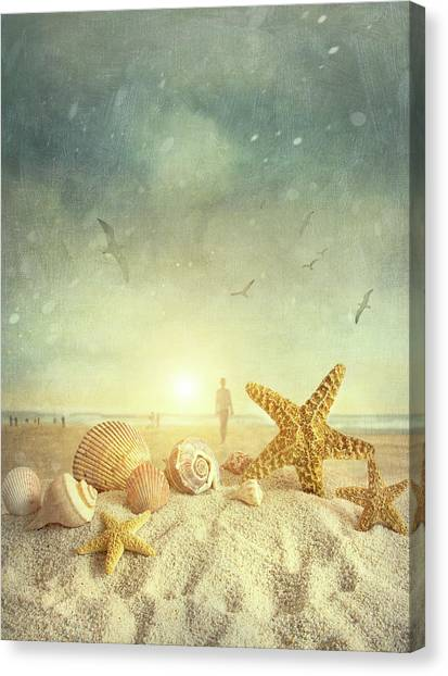 Starfish And Seashells  At The Beach Canvas Print