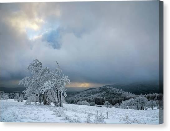Typical Snowy Landscape In Ore Mountains, Czech Republic. Canvas Print