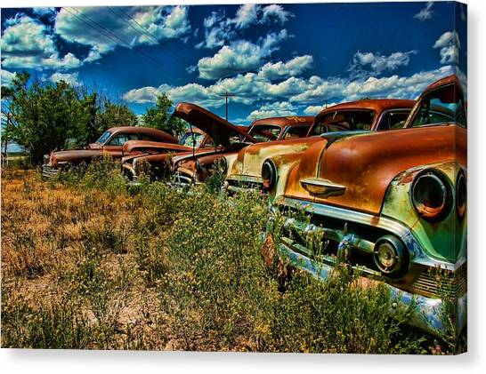 Untitled Canvas Print by Nick Roberts