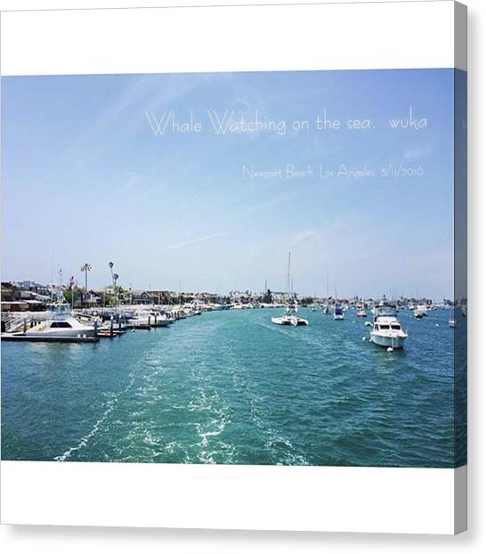 Presents Canvas Print - Instagram Photo by Present Is A Gift