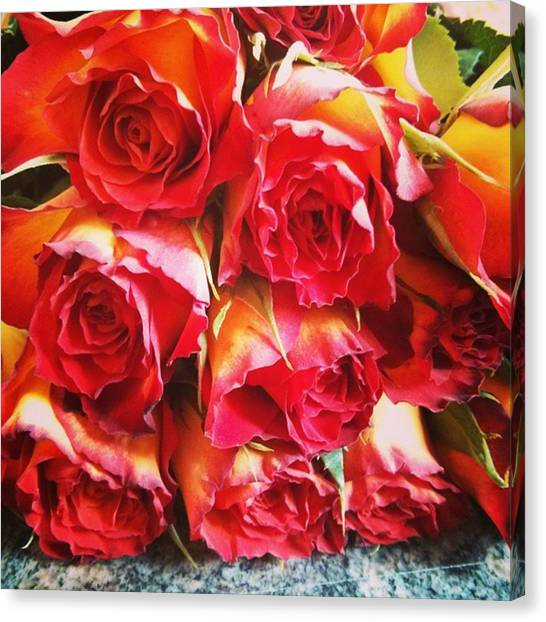 Happy Birthday Canvas Print - Colorful Bunch Of Roses by Sabine Meisel