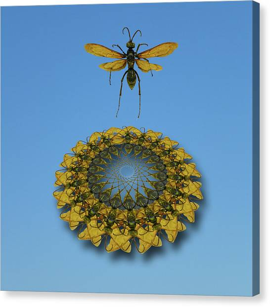 Trampoline Canvas Print - 4631 by Peter Holme III