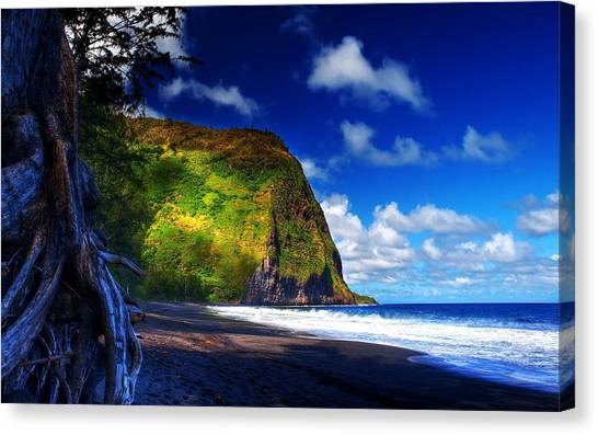Beach Cliffs Canvas Print - Beach by Super Lovely