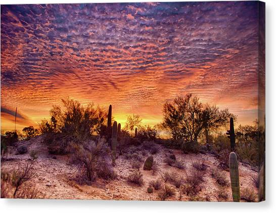 Arizona Sunrise Canvas Print