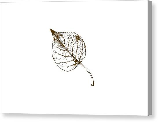 Falling Leaf Canvas Print - Autumn Day by Chastity Hoff
